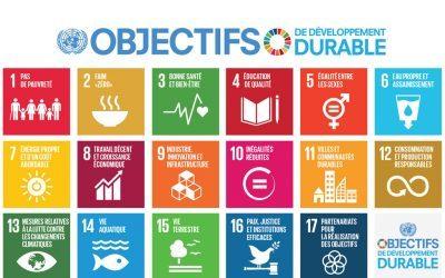[OBJECTIFS MONDIAUX] Les Objectifs de développement durable et leurs acteurs