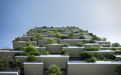 [Socialter 02/08] L'urbanisme est un humanisme