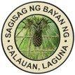 municipality of calauan