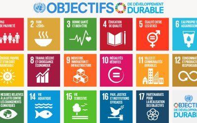 Les Objectifs du Développement Durable au Forum