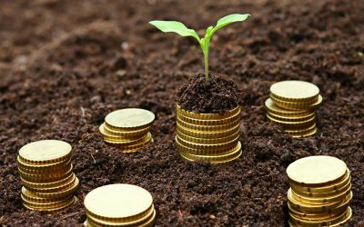 De la microfinance à l'investissement d'impact : opportunités et défis