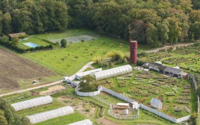 La permaculture : une approche innovante pour nos territoires