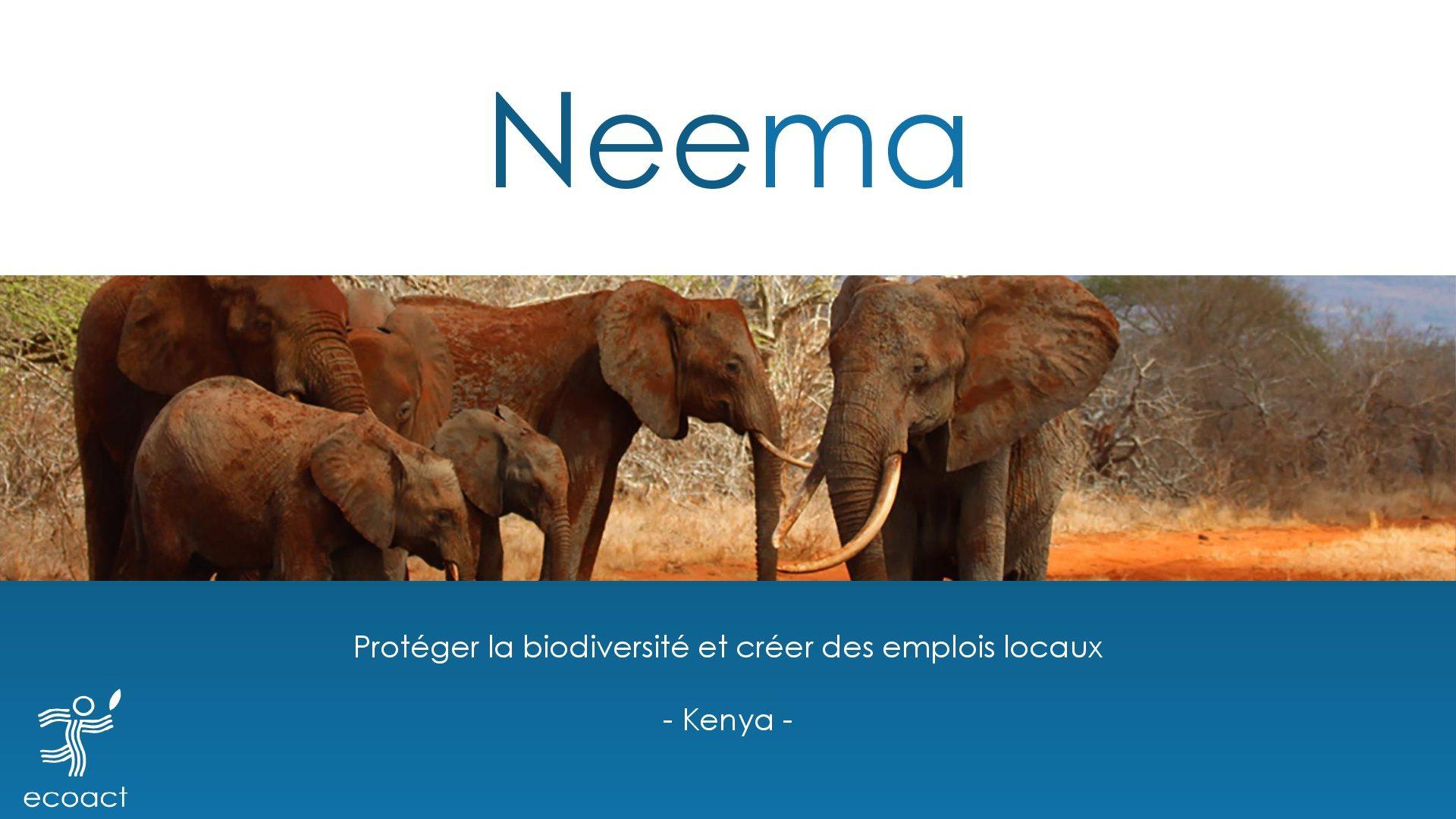 Neema_FR-001