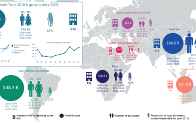 Global microfinance figures: what are the trends?